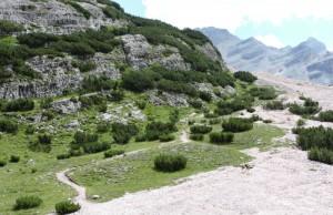 Sentiero per il Rifugio Lagazuoi